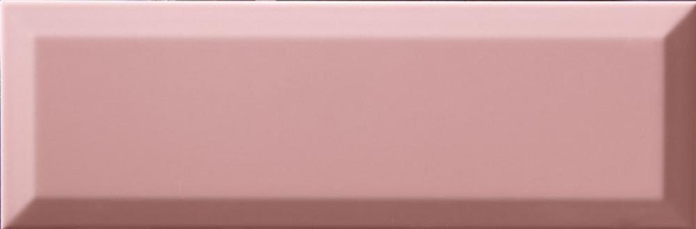 rosa-f-brillo_10x30.jpg